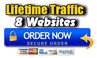 Lifetime Traffic 8 Websites